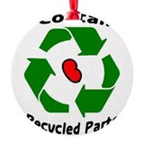 Cute Recycle Round Ornament