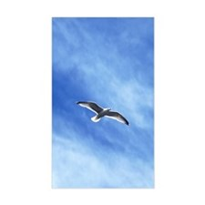 flying sea-gull Decal