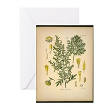 Artemesia Absinthium  Greeting Cards (Pk of 10