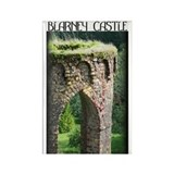 Blarney Castle Column Rectangle Magnet