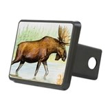 Moose (Alces alces) Hitch Cover