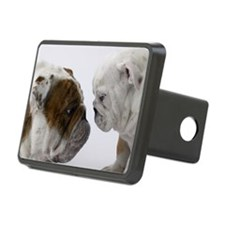 Two English Bulldogs face  Rectangular Hitch Cover