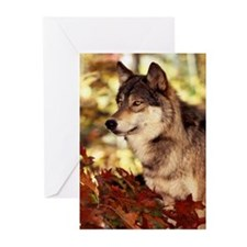 Wolf Greeting Cards (Pk of 10)
