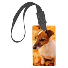 Beautiful Jack Russell Terrier Luggage Tag