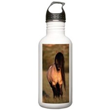 Spanish mustang (Equus Sports Water Bottle
