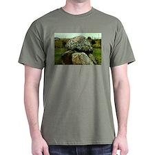 Carrowmore Dolmen T-Shirt