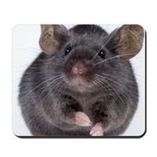 Gray mouse (Mus musculus) Mousepad