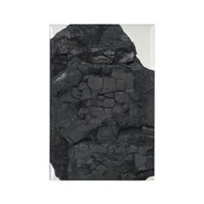 Chunk of coal Rectangle Magnet