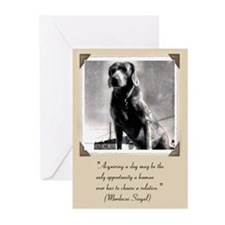 Old Hound Dog Greeting Cards (Pk of 10)