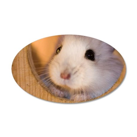 Dwarf hamster taking a peek 35x21 Oval Wall Decal
