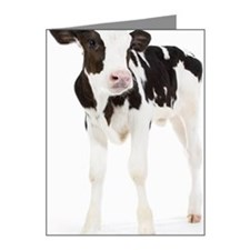 Calf Note Cards (Pk of 20)