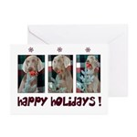 Happy Holidays Cards w/Xmas Message (10ct.)