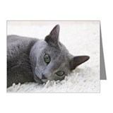Russian blue cat looking at  Note Cards (Pk of 20)
