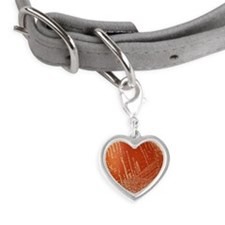 Meningitis bacteria Small Heart Pet Tag