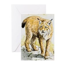 Lynx Greeting Cards (Pk of 10)