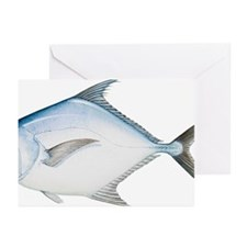 African Pompano (Alectis Greeting Cards (Pk of 10)