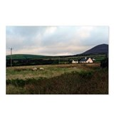 Irish countryside w/sheep Postcards (Package of 8)
