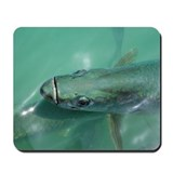 Tarpon fish Mousepad