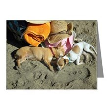 Dogs sleeping on beach Note Cards (Pk of 10)