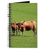 Longhorn cow and calf standing on grass al Journal