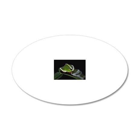 Caterpillar on leaf 20x12 Oval Wall Decal