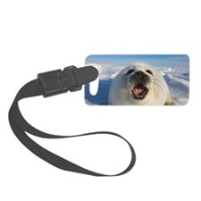 Baby Artic Seal in Canada Luggage Tag