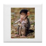 Smoking Monkey Tile Coaster
