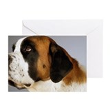 Side profile of a St. Be Greeting Cards (Pk of 20)