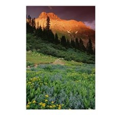 Potosi Peak, Ouray, Color Postcards (Package of 8)