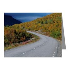 ima12266 Note Cards (Pk of 10)