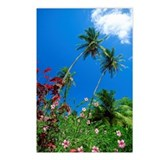 Flowers and palms, Bequia Postcards (Package of 8)