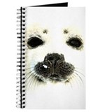 harp seal 1 Journal