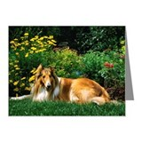 Collie dog in backyard Note Cards (Pk of 20)