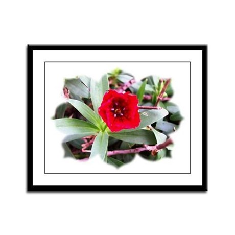 Red Flower Framed Panel Print