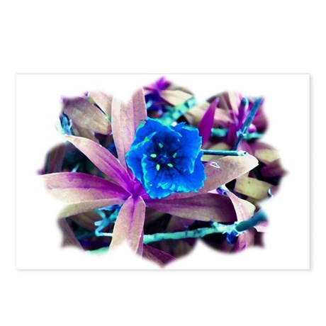 Blue Flower Postcards (Package of 8)