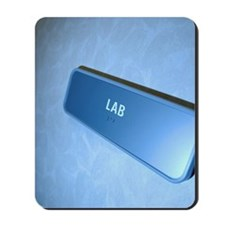 Lab sign Mousepad