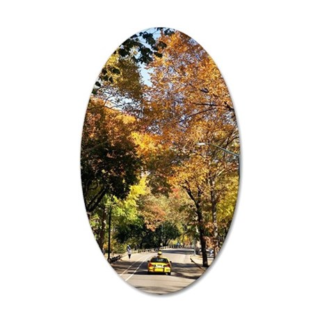 Car on a road, Central Park, 35x21 Oval Wall Decal