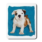 Bulldog pop Mousepad