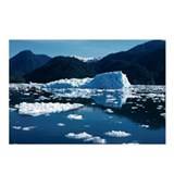 Icebergs in Glacier Bay Postcards (Package of 8)