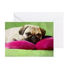 Pug laying on pillows Greeting Cards (Pk of 20)