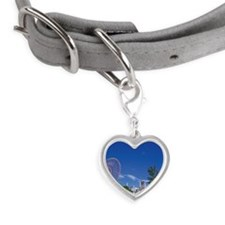 Palette town Small Heart Pet Tag