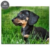 Dachshund Puppy in Grass Puzzle