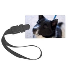 Face of border collie puppy on l Luggage Tag