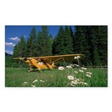 Airplane, Great Bear Wil Decal