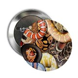 "Snake Collage 2.25"" Button (100 pack)"