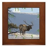 Cute Animal photography Framed Tile