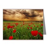 Last rain Note Cards (Pk of 10)