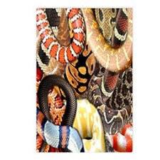 Snake Collage Postcards (Package of 8)
