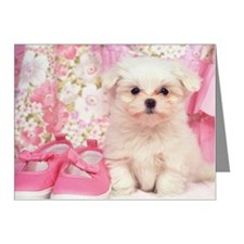 Maltese Dog Note Cards (Pk of 10)