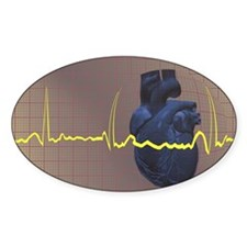 Electrocardiogram over a huma Decal